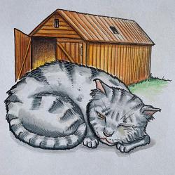 Batley Samuel Illustrations
